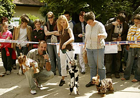 Psie modelky na módnej prehliadke, počas akcie Pes Sympaťák 2006.